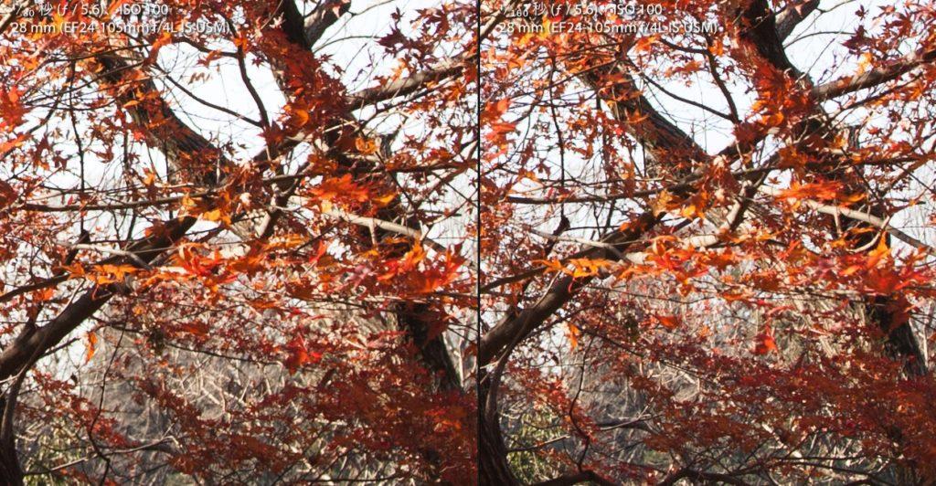 CPLフィルターあり写真となし写真の等倍での比較